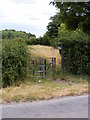 SP7800 : Ridgeway Kissing Gate by Gordon Griffiths
