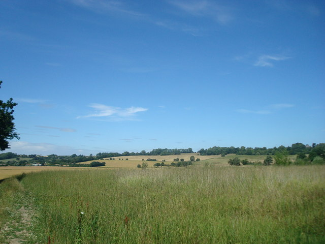 Field near Pluckley Thorne by Stacey Harris