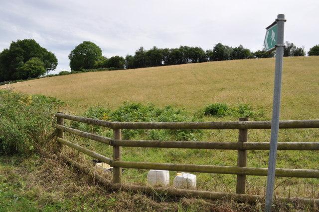 Public footpath across field