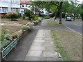 TQ3964 : Cherry Tree Walk, Coney Hall by Alex McGregor