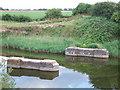 TF4619 : Remains of former railway bridge by Richard Humphrey