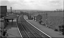 SX4563 : Bere Ferrers Station by Ben Brooksbank
