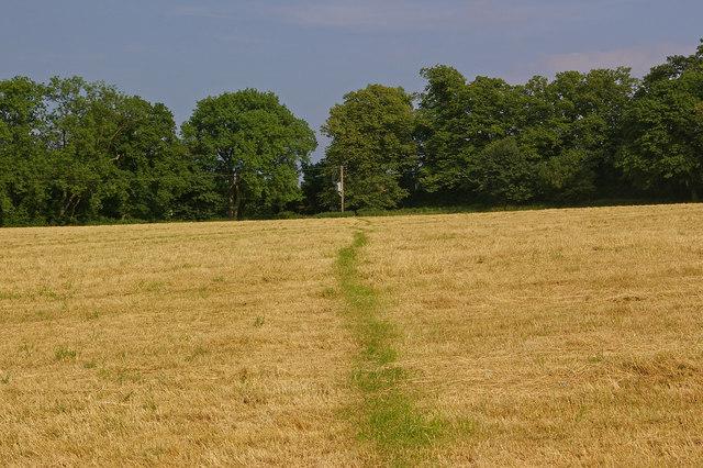 Footpath across stubble field