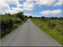 C0508 : Road at Treankeel by Kenneth  Allen