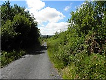 C0910 : Road at Cashelreagh by Kenneth  Allen