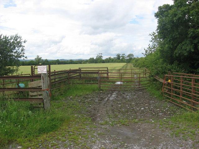 Farm track at Drumman, Co. Meath