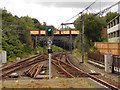 SD8010 : Metrolink Tramway - ELR Bridge by David Dixon