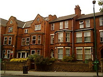SK5640 : Victorian Houses on Derby Road by Andrew Abbott