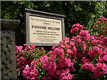 SK3463 : Church notice board and roses by Andrew Hill