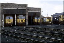 NZ4057 : Sunderland South Dock loco shed by roger geach