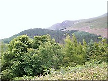 J3630 : Drinnahilly and the north-eastern flank of the Mournes from Curraghard vantage point by Eric Jones