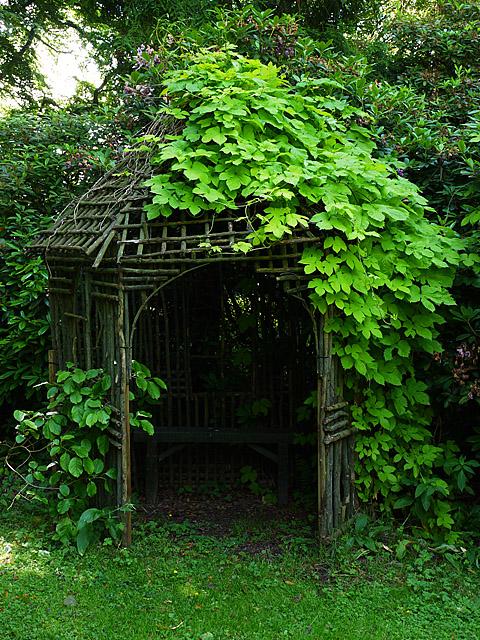 The Vinny Garden, Pitmuies