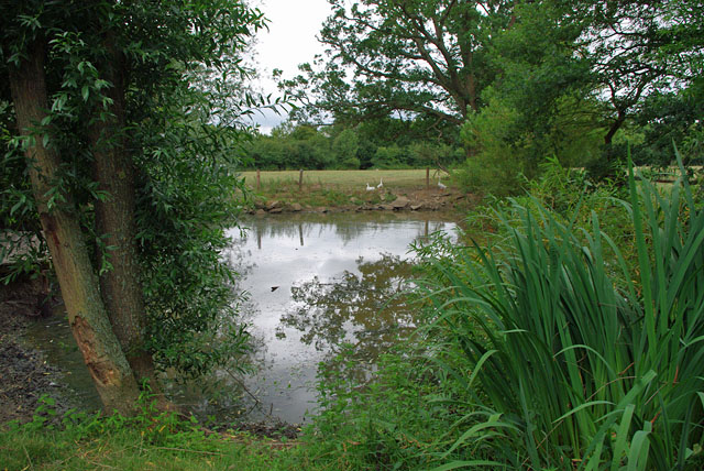 Pond near Rushetts