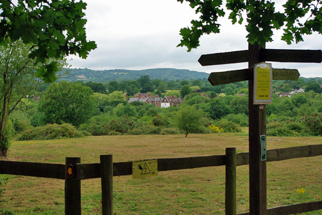 View over Capel towards Leith Hill