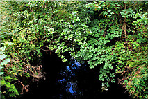 J3267 : Lock no 4, disused Lagan canal (2) by Albert Bridge