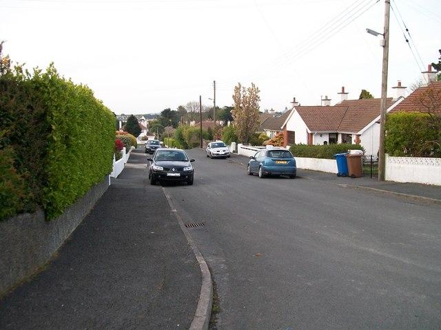 Lower section of Slievenabrock Avenue