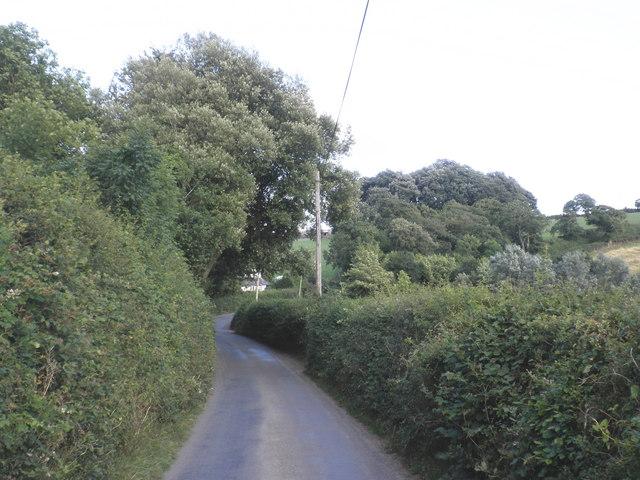 Country Lane, near Roundhill