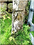 SD6683 : Benchmark on Barbondale gatepost by Roger Templeman