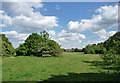 TQ4569 : Park Wood, Chislehurst (3) by Stephen Richards