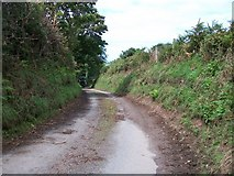 SH3137 : Narrow  and muddy country lane approaching a road junction near Boduan by Eric Jones