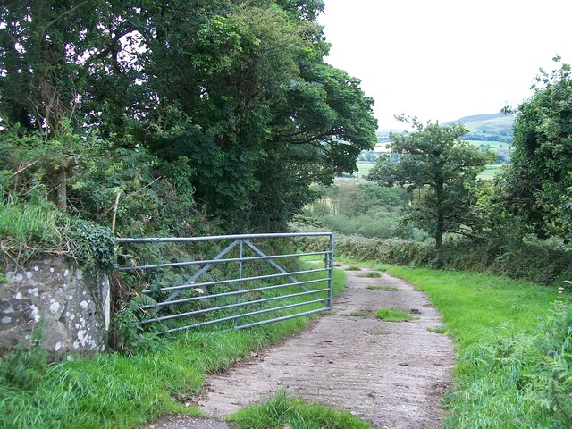 Concreted track through Coed Bryn Hendre