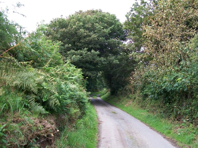 Country lane at the southern end of Coed Bryn Hendre