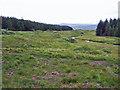 NG4734 : Drumlins in Glen Varragill by Richard Dorrell
