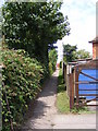 TM3877 : Footpath to the A144 Norwich Road by Adrian Cable