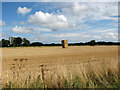 TG3421 : Straw bales in harvested field, Barton Turf by Evelyn Simak
