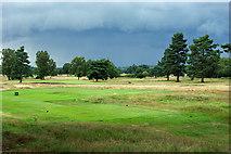 TQ2352 : Walton Heath Golf Club - 10th tee, old course by Robin Webster