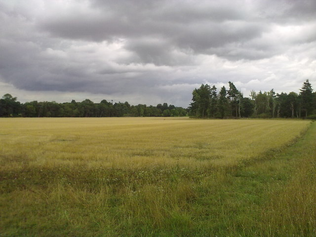 A recently harvested field near West Newton
