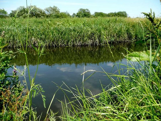 River Blythe to East of lake at Ryton End