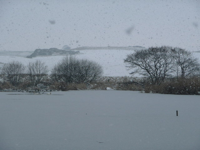 View across Newton Pool towards Kelso Hill from the Bird Hide