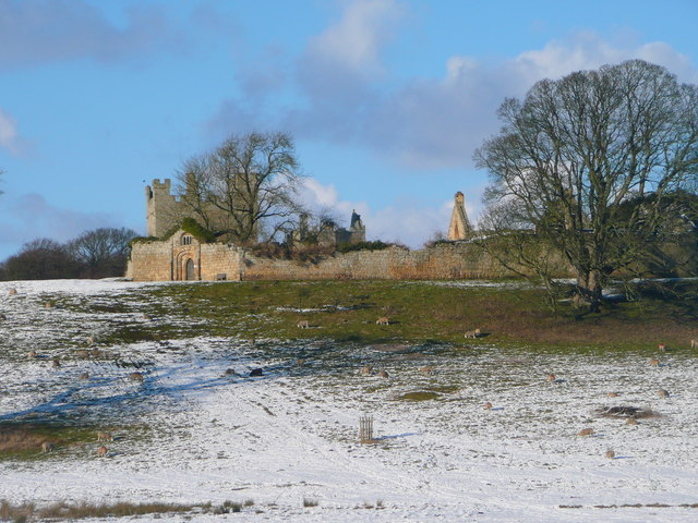 Hulne Priory from path by the river, Hulne Park, Alnwick