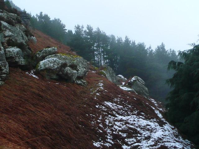 Rock outcrops on Cockenheugh