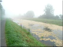 N1065 : Bloomin' algae on the Royal Canal in Kilmakinlan, Co. Longford by JP