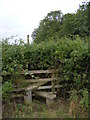 TM3668 : Stile near South Grange by Adrian Cable