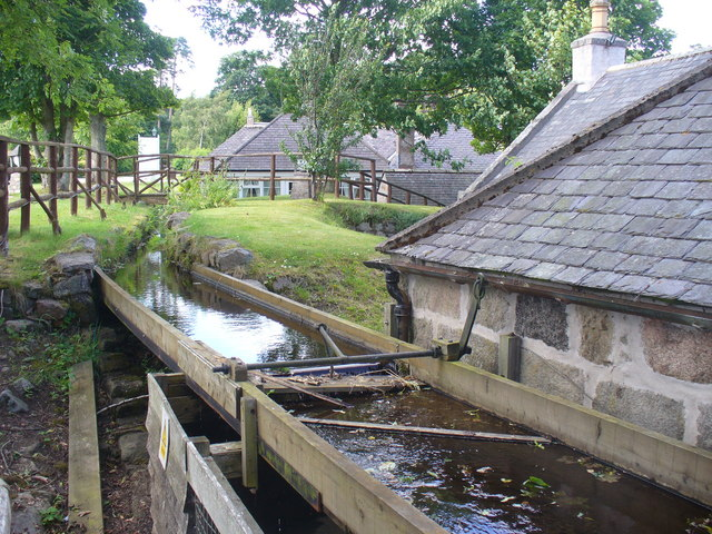 Feeding the Water Mill