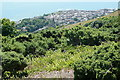 SZ5778 : From Bonchurch Down by Graham Horn