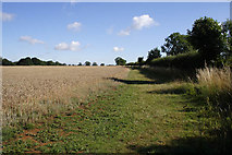 SK7627 : Bridleway to Hill Top Farm by Kate Jewell