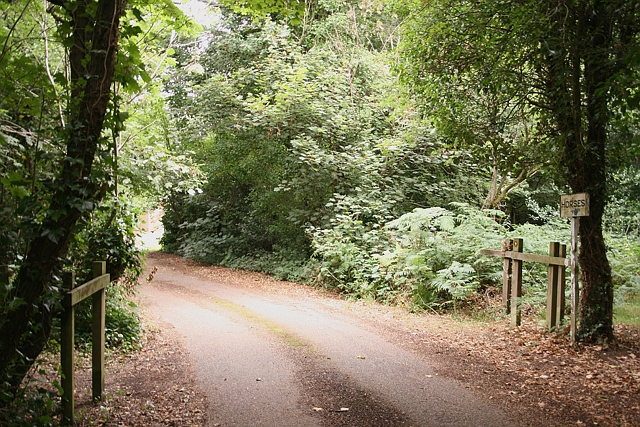 Walton Heath: horse ride and footpath