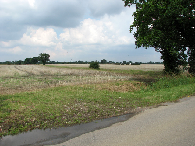 Harvested fields north of Ketteringham Road