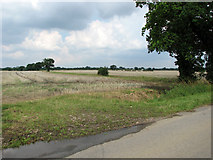 TG1301 : Harvested fields north of Ketteringham Road by Evelyn Simak
