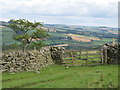 NY8462 : Gate on the track between Langley Castle and Elrington by Mike Quinn