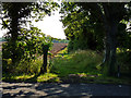 NZ4310 : Footpath at the edge of HMP Kirklevington by Graham Scarborough