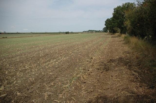 Arable land near Park Farm