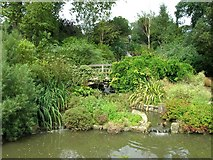 TQ2882 : Waterfalls, Queen Mary's Gardens by David P Howard