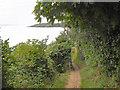 SW7928 : Cliff Path Maenporth to Mawnan by David Dixon