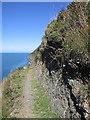 SN3355 : Ceredigion coast path below Penmoelciliau by Rudi Winter