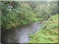 SX1885 : The River Inny at Treglasta Bridge by Rod Allday
